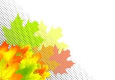 Autumn corner. Autumn leafs in the corner Royalty Free Stock Image