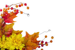 Autumn corner Royalty Free Stock Images