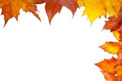 Autumn corner Stock Photography