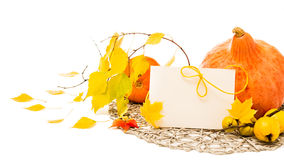 Autumn corner composition with greeting card, text space Stock Images
