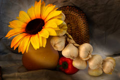 Autumn Cornuco Stock Images