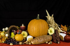 Autumn Cornucopia royalty-vrije stock foto's