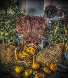 Autumn Cornucopia stock afbeelding
