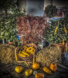 Autumn Cornucopia. A bunch of autumn produce Stock Image