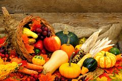 Autumn cornucopia. Harvest or Thanksgiving cornucopia filled with vegetables against wood Royalty Free Stock Images