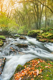 Autumn in Cornwall Stock Photo
