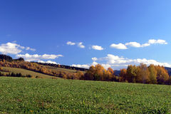 Autumn country. Background of autumn country with blue sky Royalty Free Stock Photography