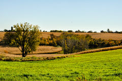 Autumn Country. Beautiful autumn colors of the countryside stock photography