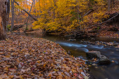 Autumn in the Country Stock Photography