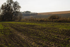 Autumn country hilly landscape Royalty Free Stock Images