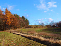 Autumn country Landscape Stock Photography