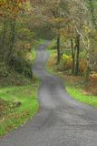 Autumn country lane Royalty Free Stock Image