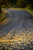 Autumn Country Road. Country road in the autumn with leaves on it Royalty Free Stock Photos
