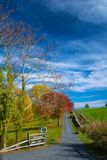 Autumn on a country road Royalty Free Stock Photography