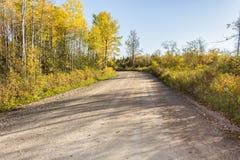 autumn country road Royaltyfria Foton