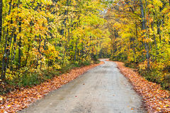 Autumn Country Road Fotografia Stock Libera da Diritti