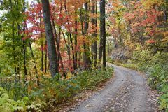 Autumn Country Road. Country Gravel Road in Autumn Stock Images