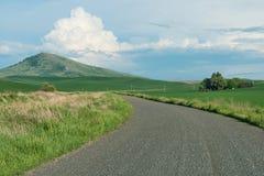 autumn country road Стоковые Фото