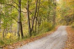 autumn country road 免版税库存图片