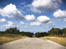 autumn country road 免版税图库摄影