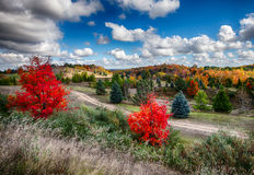 Autumn Country Road Royalty Free Stock Photos