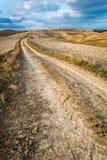 Autumn Country Road em Toscânia Foto de Stock