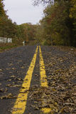Autumn Country Road. Country road with autumn leaves Royalty Free Stock Image