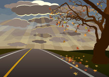 Autumn Country Road. Autumn scene: sun setting in open road, besides a creepy tree and falling leaves. EPS 8, CMYK vector illustration with global colors Royalty Free Stock Images