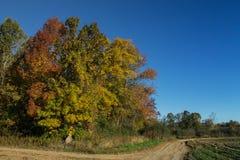 Autumn Country Scene dans le Midwest Image libre de droits