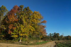 Autumn Country Scene in the Midwest Royalty Free Stock Image
