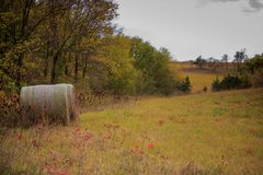 Free Autumn Countryside Royalty Free Stock Images - 102156129