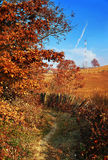 Autumn countryside Royalty Free Stock Photography