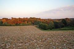 Autumn in the countryside,4. Autumn in the countryside 2016.,Bregana Pisarovinska,Croatia,Europe,landscape after maize harvest,4 Royalty Free Stock Photos