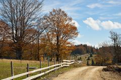Autumn in Countryside. Colorful Autumn Trees with Country Road in Mountain Stock Images