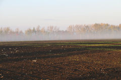 Autumn in the countryside. D in the early morning Royalty Free Stock Photos