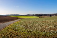 Autumn countryside with fields, forest, road and blue sky royalty free stock image