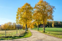 Autumn in Sweden. Autumn in the countryside of Ostergotland, Sweden on a sunny day in October 2017 Stock Photo