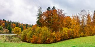 Autumn countryside on a rainy overcast day. Panorama of autumn countryside on a rainy day with overcast sky. beautiful colorful scenery stock photography