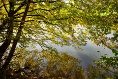 Autumn Countryside View Of A Channeled River Bank. At A Sunny Day stock photos