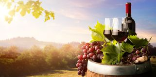 Free Autumn Countryside Wine Background; Vine, Red Wine Bottles, Wineglass, Wine Barrel; Wine Tasting Concept Royalty Free Stock Photography - 159369797