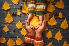 Autumn couple holding yellow ash leaf,embrace hands top view.Aut Royalty Free Stock Photography
