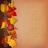 Autumn cover for an album with photos Stock Image