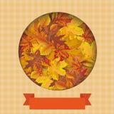 Autumn Cover Hole Foliage Ribbon Image libre de droits