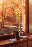Autumn Cozy View From Window. With Pills, Cup Of Warm Drink And Hanky On Windowsill. Royalty Free Stock Image