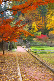 Autumn in Cranbrook house Royalty Free Stock Photo