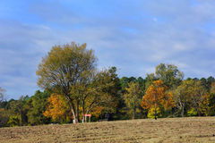 Autumn at Crater of Diamonds State Park Stock Photo