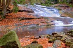 Autumn Creek Stockfoto