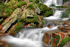 Autumn creek. In Czech republic Royalty Free Stock Photo