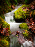 Autumn Creek. A silky flowing creek during the fall season with moss covered rocks provides a peaceful environment Stock Images