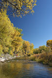 Autumn creek Royalty Free Stock Photo